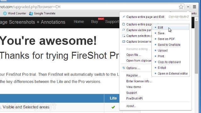 fireshot download